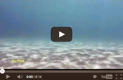 Άρτεμις - Βουτιές και κολύμπι