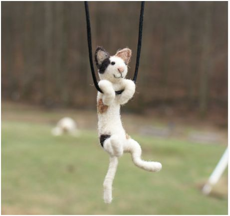 Wonderful cock Picture of swinging a cat