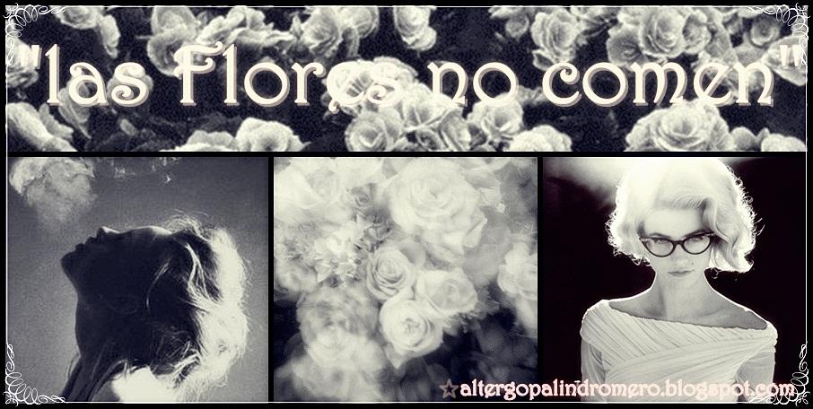 Las Flores no comen