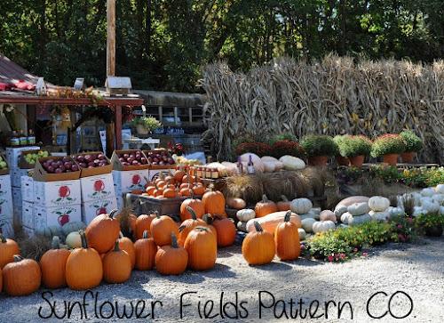 Sunflower Fields Pattern Company