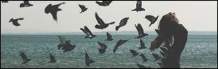 http://corka-mafii.blogspot.com/