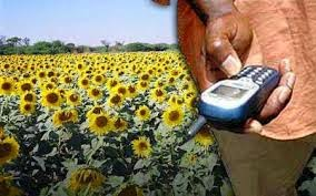 Mobile SMS Agricultural Information and weather for Farmers