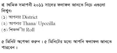 primary samaponi exam result 2011