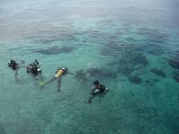 4 Pulau di Kepulauan Derawan Yang Sering Dikunjungi Wisatawan