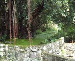 Pulau Samosir : Wisata Alam Yang Indah dan Natural