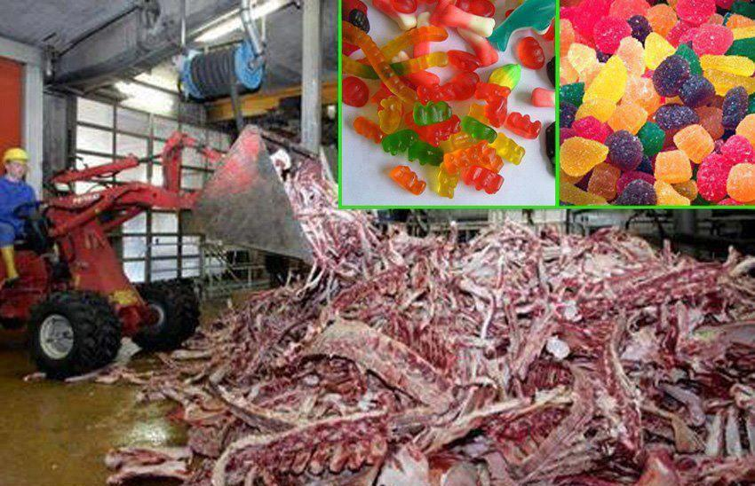 Image result for how gummies are made