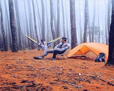 Seberapa sering Anda pergi ke alam dan menikmati hamparan pepohonan hutan Hutan Pinus Ala Twilight di Imogiri
