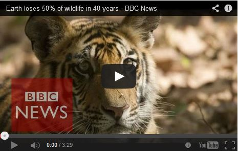 http://kimedia.blogspot.com/2014/10/earth-loses-50-of-wildlife-in-40-years.html