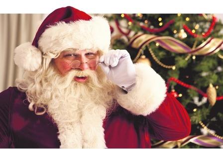 Christmas Dog Stockings