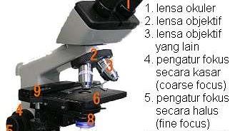 Bagian bagian mikroskop fungsi dan cara menggunakannya