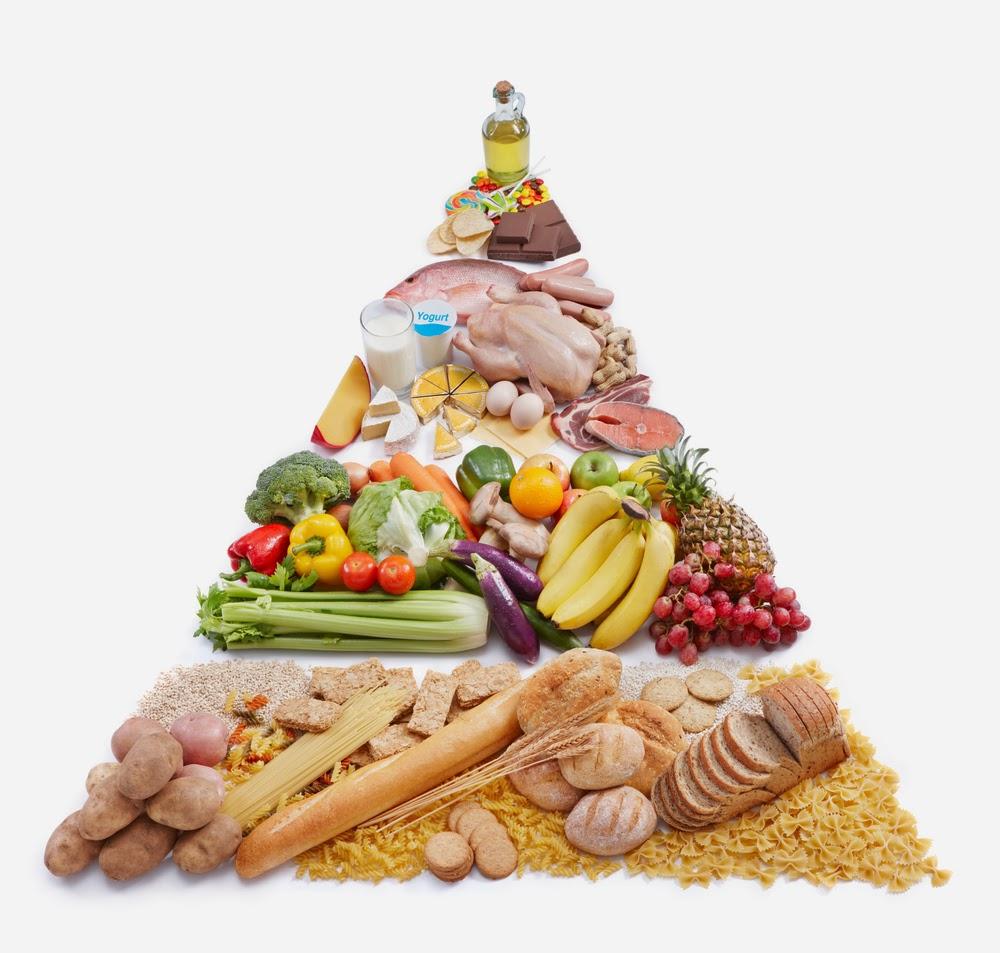 táplálkozási piramis