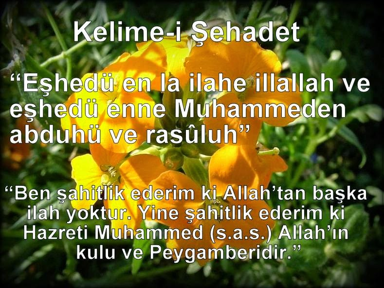 şahadet nasil müslüman olunur