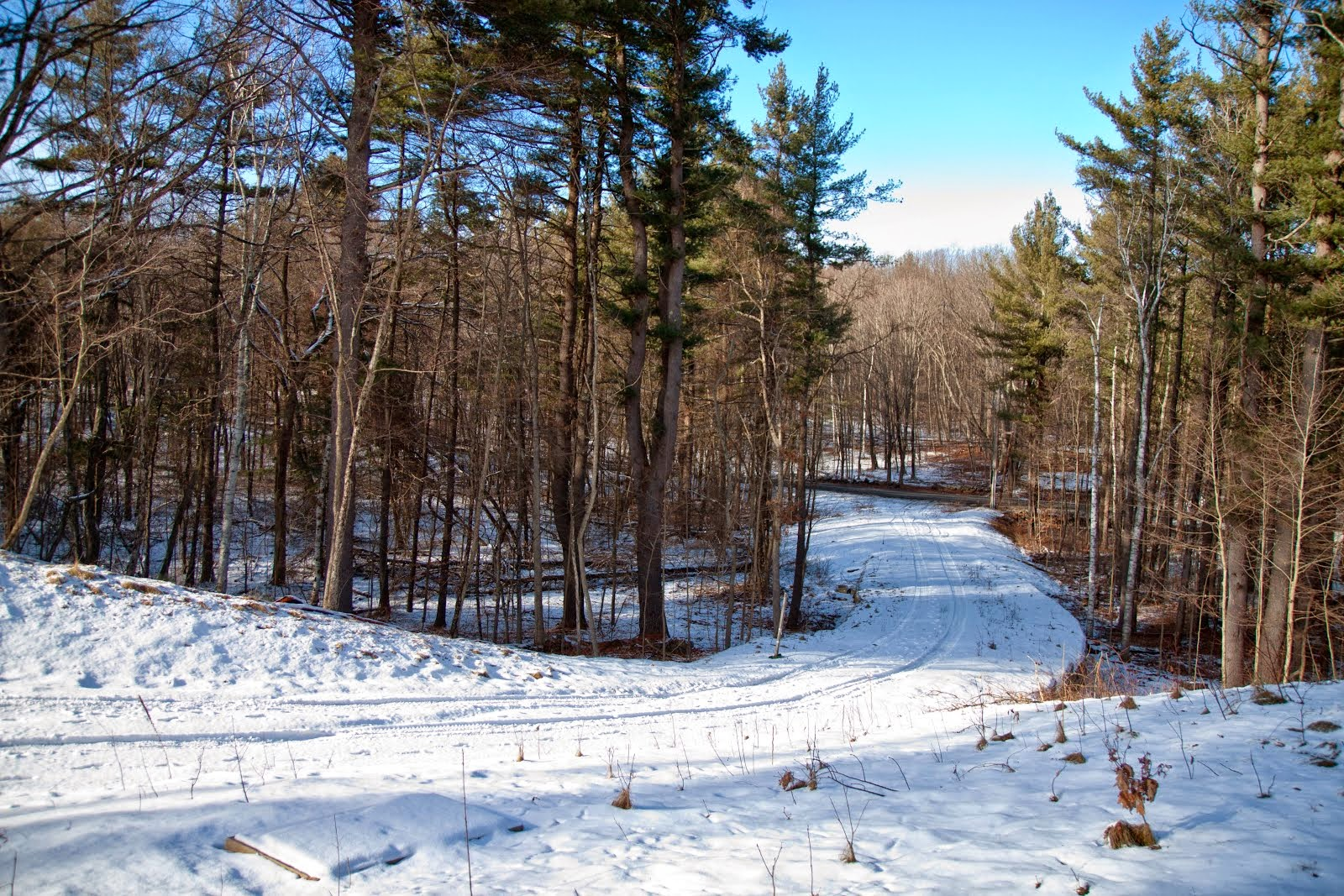 Great Land Opportunity in Boxford!