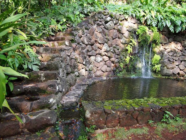 Twisted Fern Farm Kauai Gardens