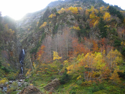 Plan des grauers Vall de Toran Val d'Aran Pirineu de Lleida
