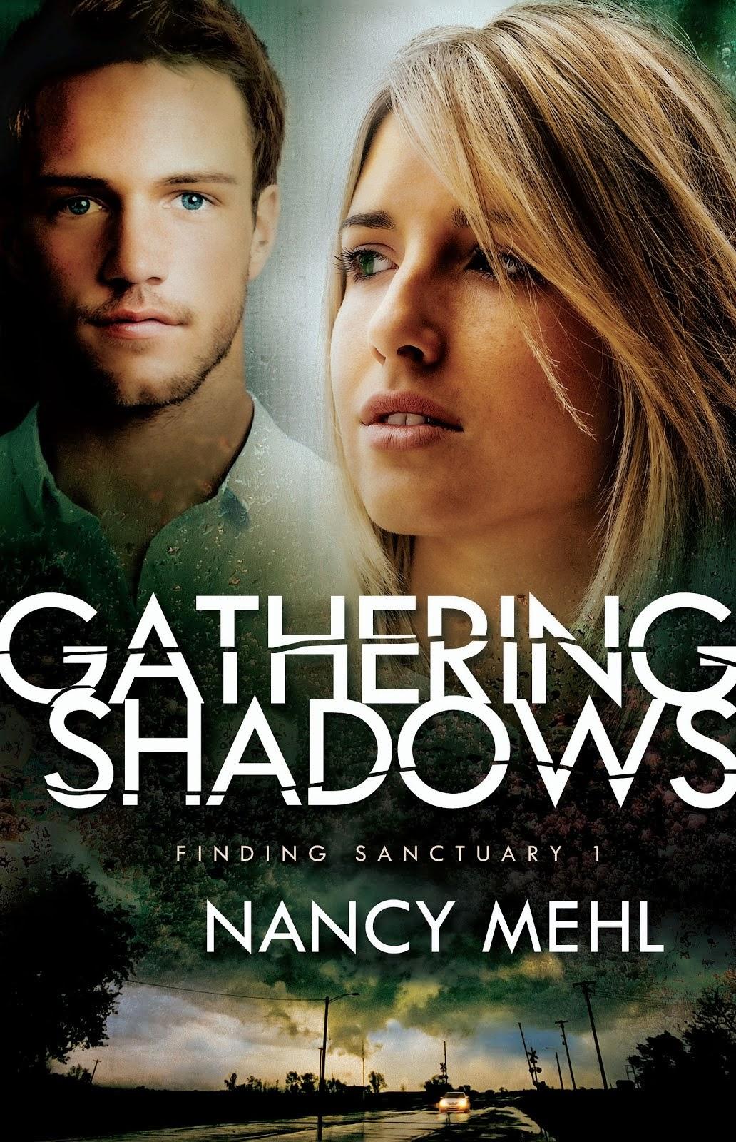 Nancy Mehl's Newest