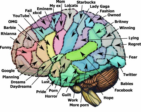 Computer Vs human Brain Essay - Full Discussion Topic