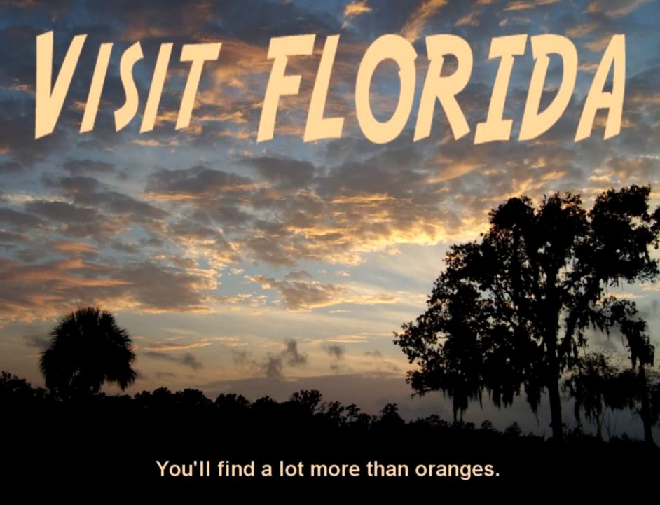 Florida Tourism  This Wallpapers