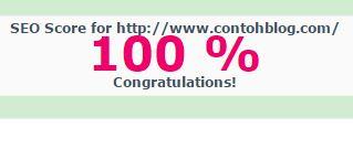 skor seo blog chkme 100%