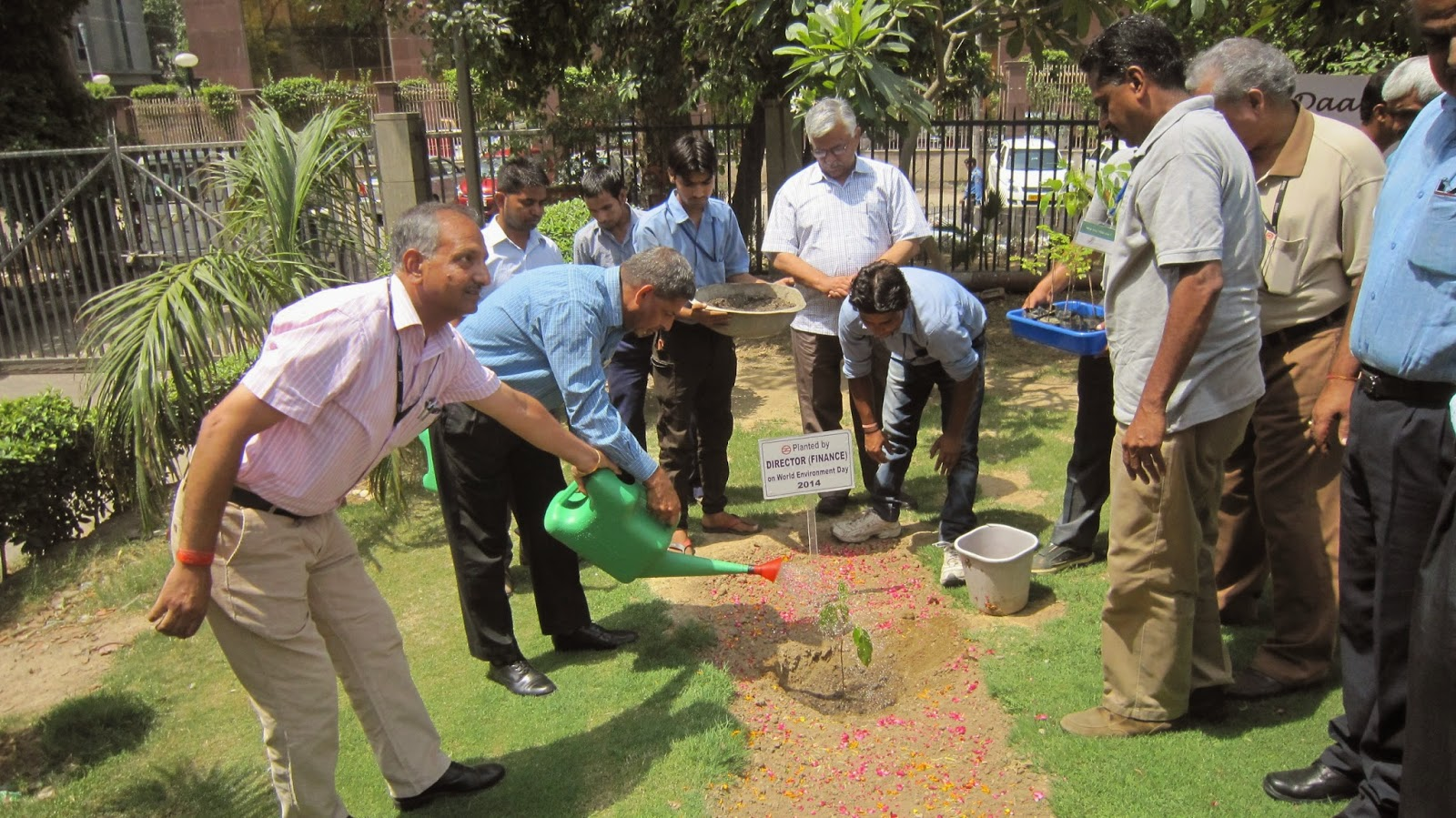 DMRC Director Finance planting a rudrakhsa tree