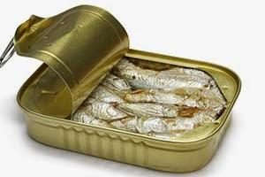 Cães podem comer sardinha?