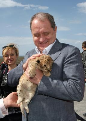 Фото Укринформ: львенок родился в Крыму