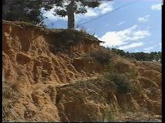 UNO DE LOS MAYORES DESASTRES ECOLÓGICOS EN SANLÚCAR ES EL DE LA CORNISA VERDE Y ALTO DE LAS CUEVAS