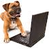 Hablemos de Inteligencia Canina