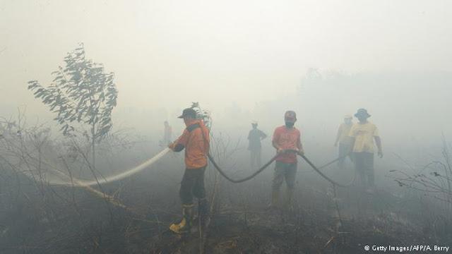 Anak Usaha Sinar Mas Group Ikut Terseret Tersangka Pembakar Hutan