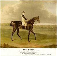Um cavalo de corrida inglês, cujo nome era um palavrão