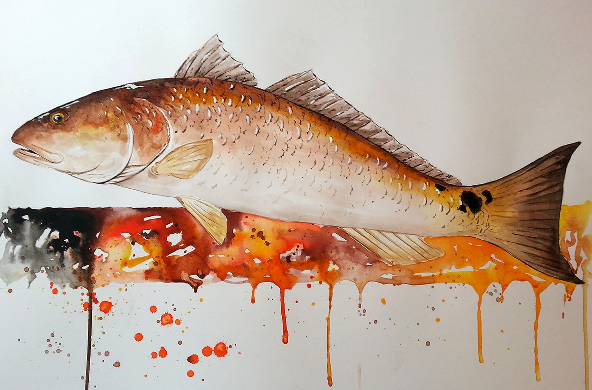 A year on the fly red drum red fish painting for Red drum fishing