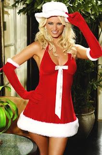Santa's Honey Costume