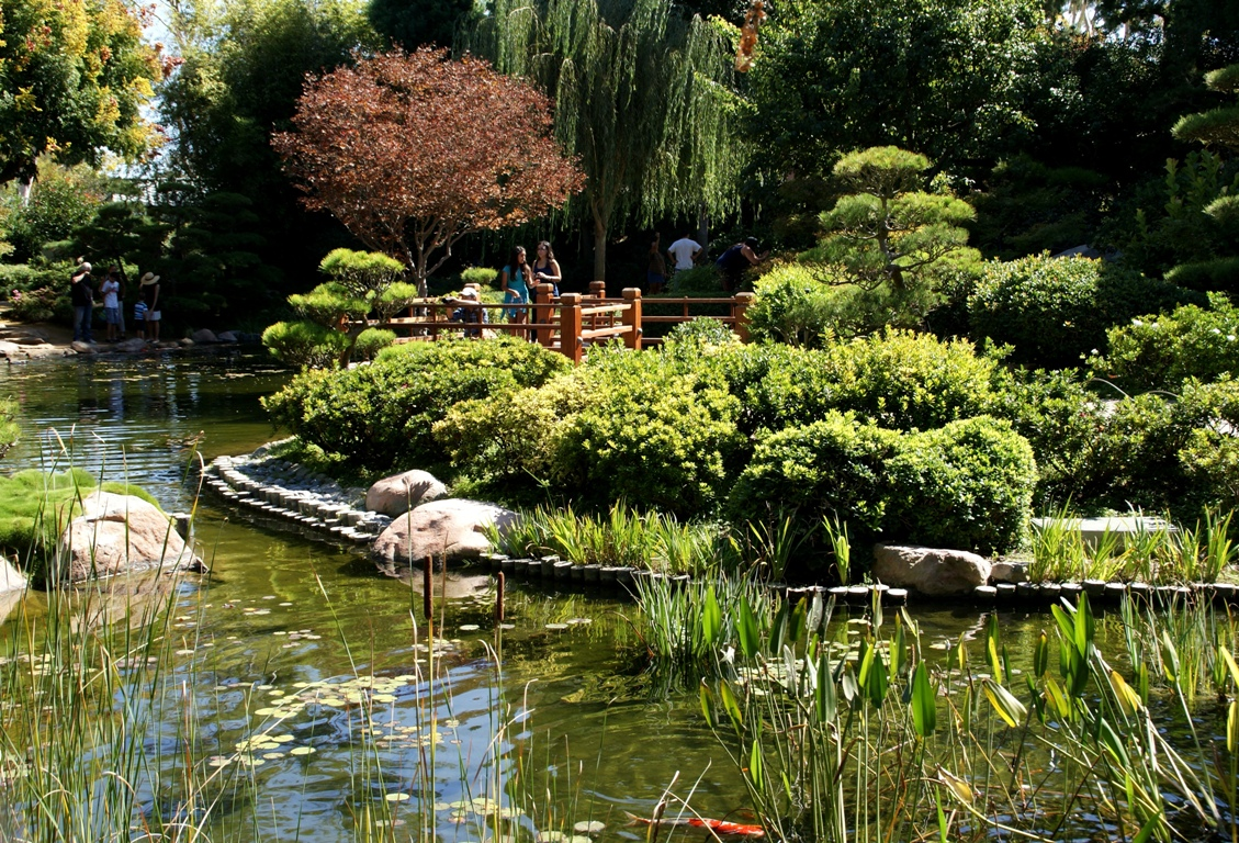 A Photo A Thought Place Japanese Garden At