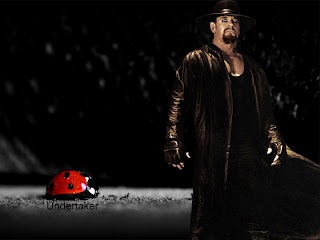 WWE Undertaker Wallpaper