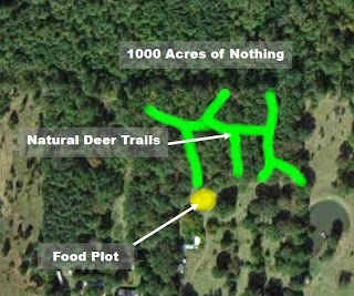 Natural Deer Corridors