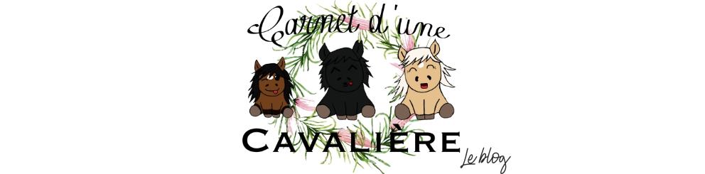 Carnet d'une Cavalière - Le Blog