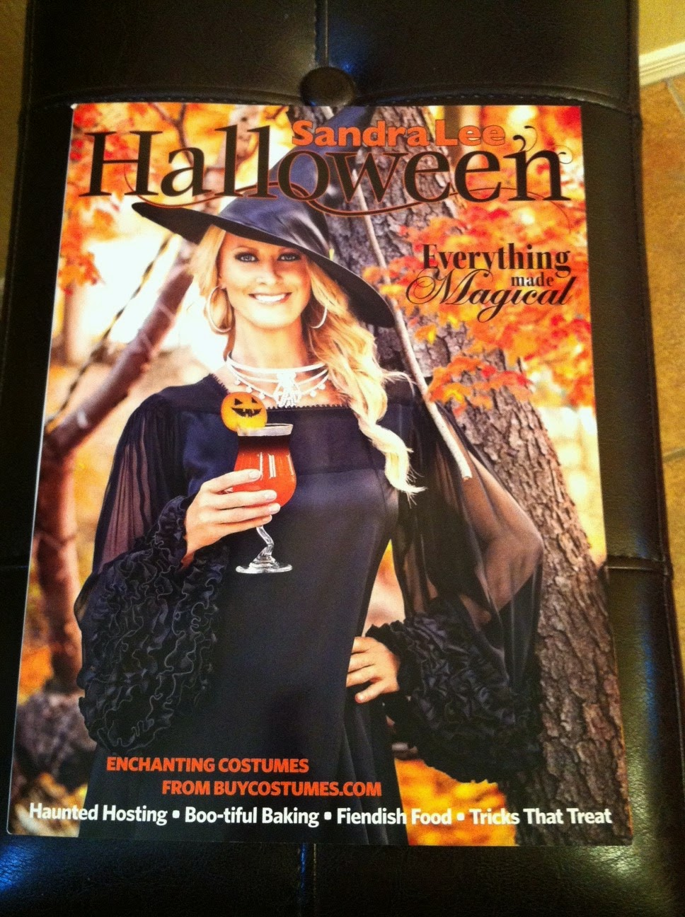 vintage halloween collector: sandra lee sept./oct. 2014 magazine