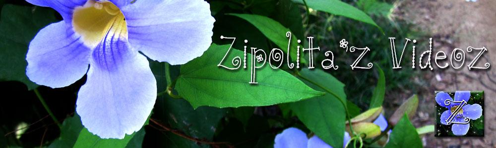 Zipolita'z  Videoz