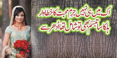 Ik Mein Hi Nahin Jurm-e-Mohabbat Ka Khatawar - 2 line urdu poetry