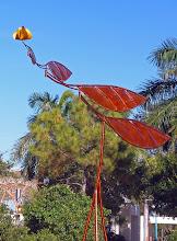 Tangerine Glider