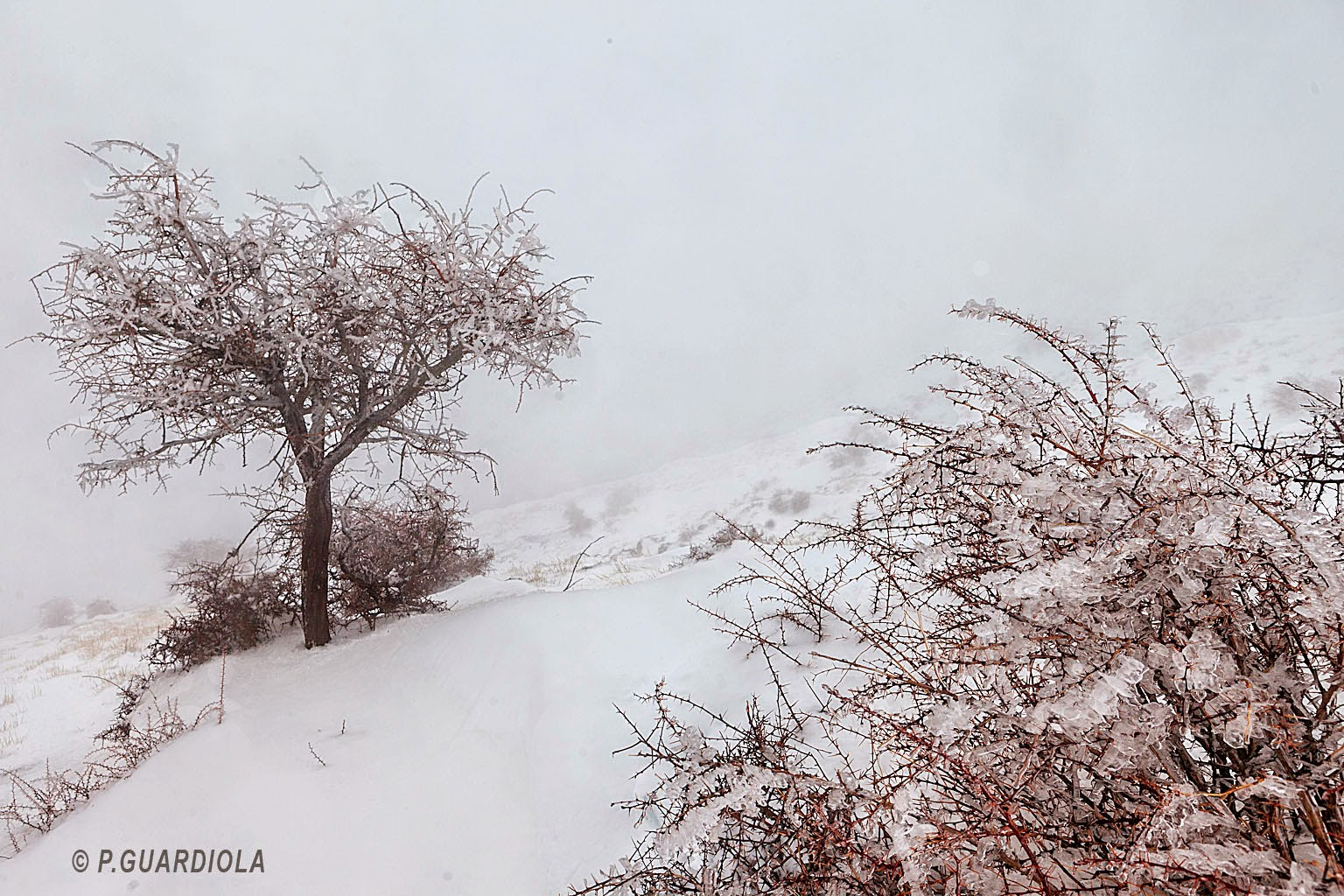 Nieve a una altitud de 1858 m.