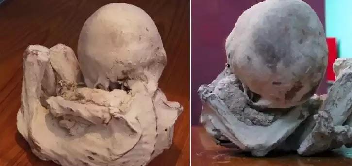 Οι επιστήμονες μελετούν το ένα «ξένο» σώμα μικρής μούμιας στην Nazca,με στάση σώματος εμβρύου!