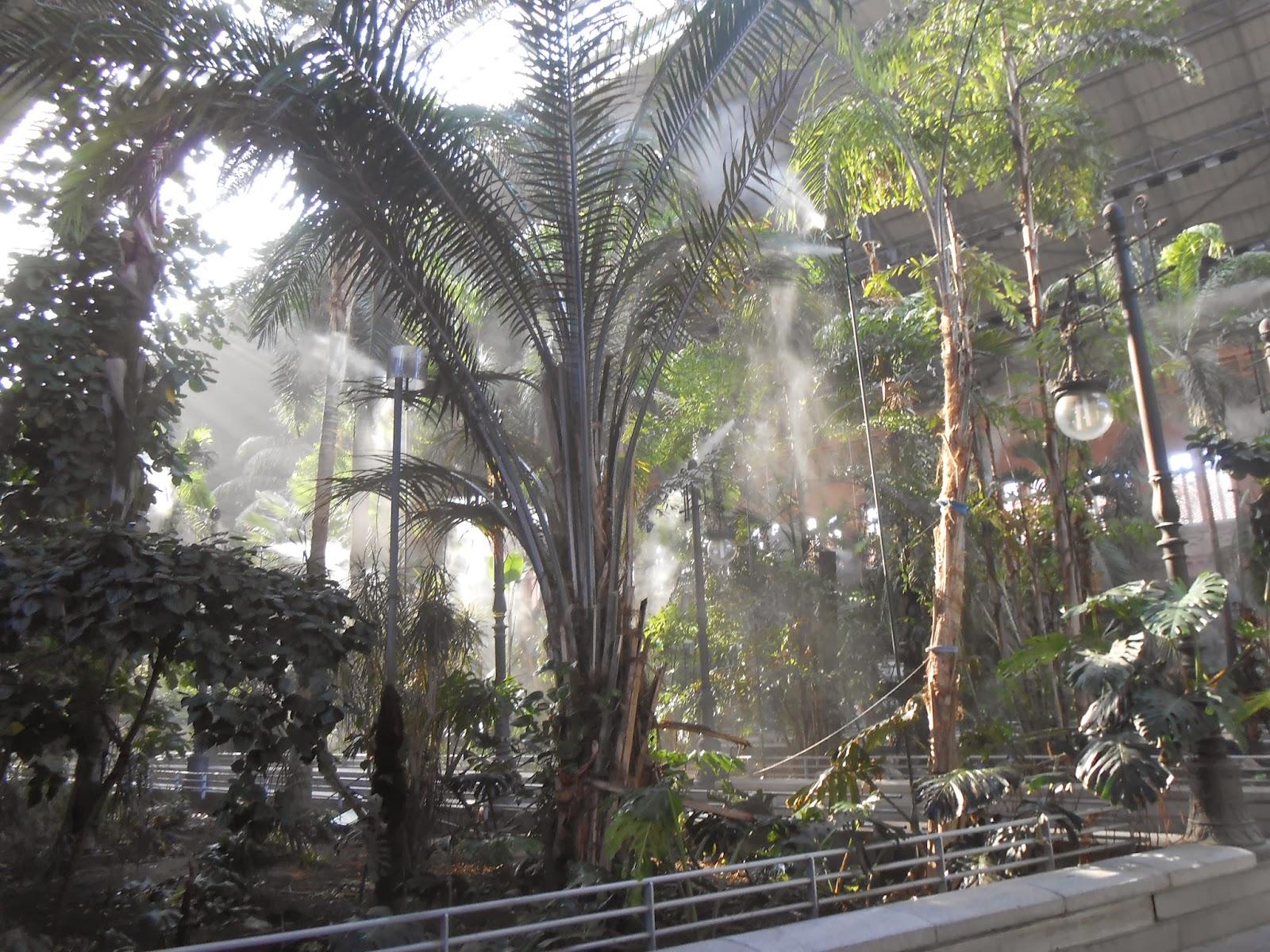 Madrid stazione atocha renfe giardino botanico - Giardino verticale madrid ...