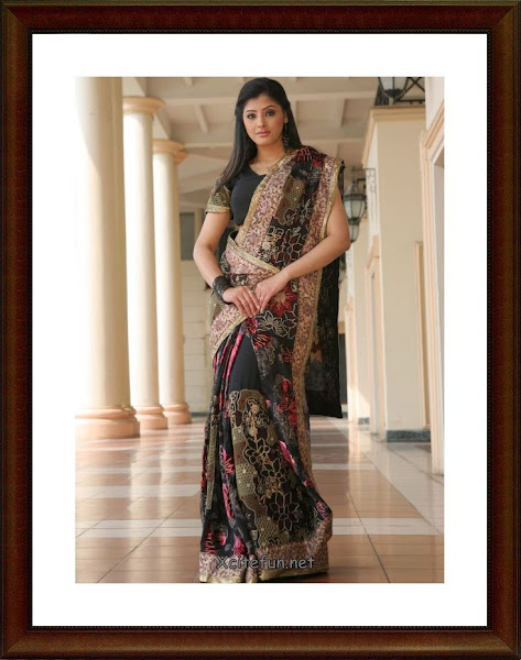 Beautiful Indian Cotton summer Sarees