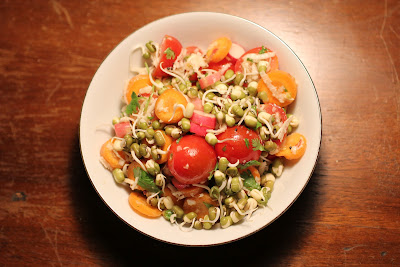 sprouted moong dal (mung bean) farm salad