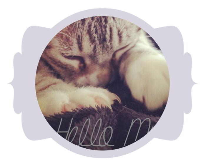 http://helloomyleo.blogspot.fr/