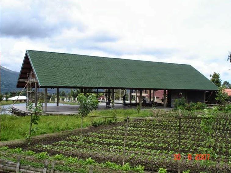 Mái dùng tấm lợp sinh thái Onduline màu xanh cho  trang trại rau sạch  rất mát tăng năng xuất lao động