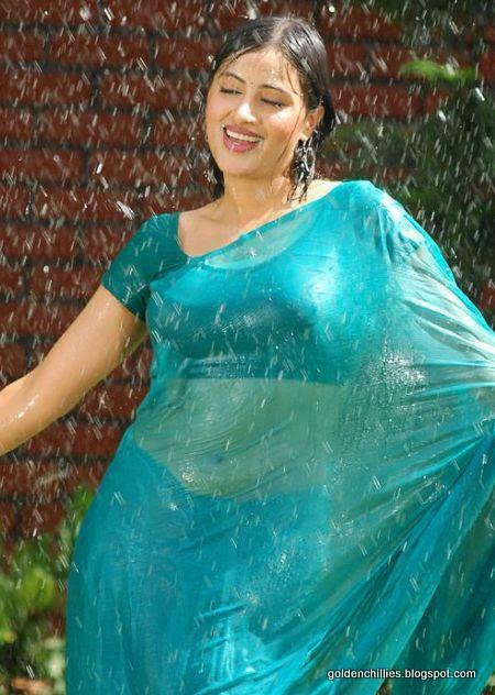 actress wet saree back images