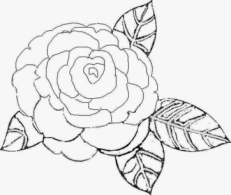 Dibujos para colorear maestra de infantil y primaria for Plantas ornamentales para colorear