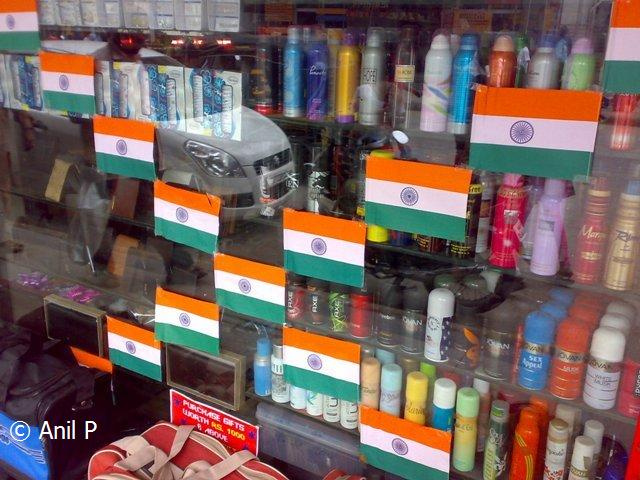 Windy skies tiranga the indian tricolour for 15th august independence day decoration ideas